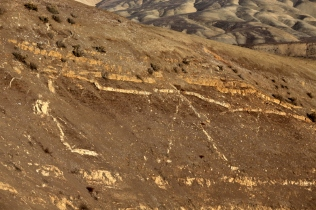 Panoche hills : a reservoir scale injection complex