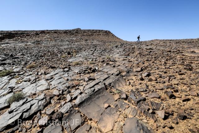 ANR SeqStrat-Ice Morocco fieldwork 2014: hirnantian glacial pavement