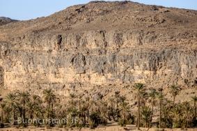 ANR SeqStrat-Ice: : Morocco preglacial to hirnantian glacial transition