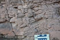 ANR SeqStrat-Ice Morocco fieldwork 2014: Hirnantian tillite